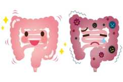 Leaky Gut How It Affects The Entire Body And Overall Health