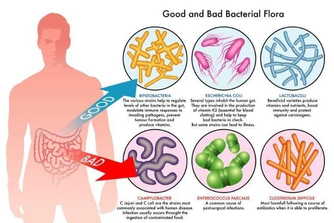 Leaky-Gut-Are-you-just-bloated-or-is-it-something-else